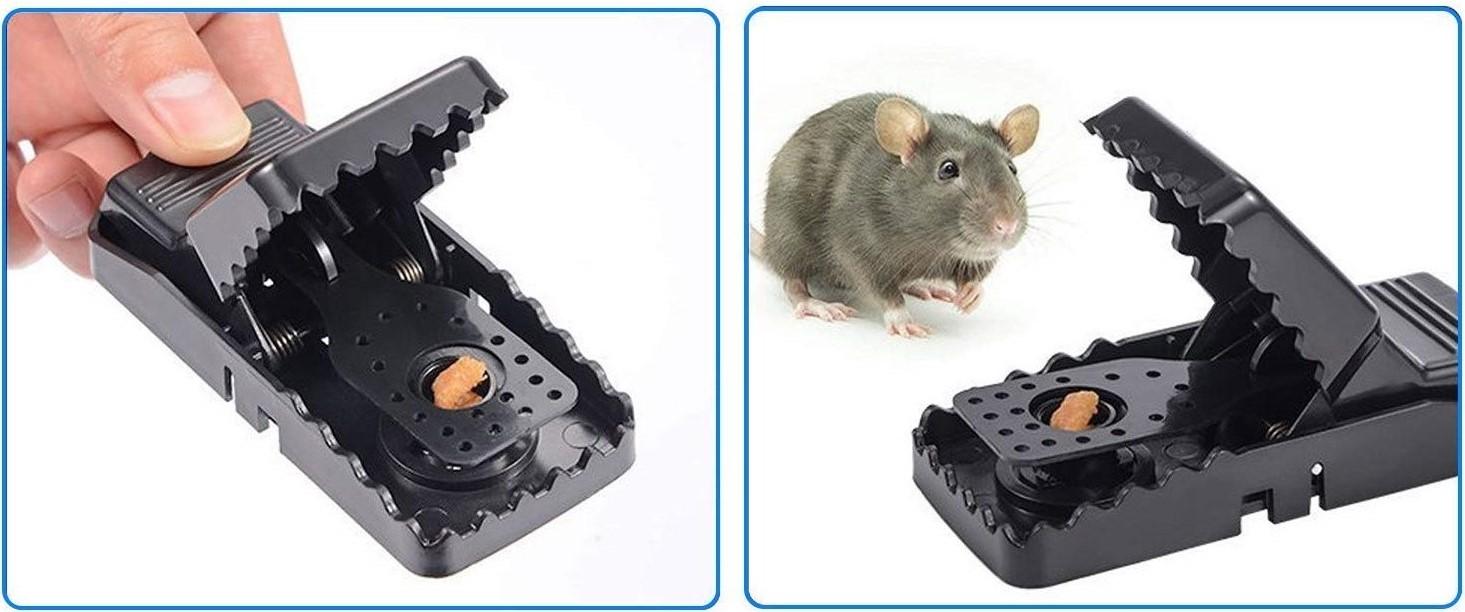 trappola a molla per topi